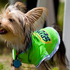 Alton Whisker Walk 2009 : Portion of the proceeds will benefit Hope Animal Rescues